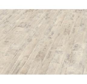 WINEO DESIGNLINE 800 WOOD click DLC00076 Copenhagen Frosted Pine