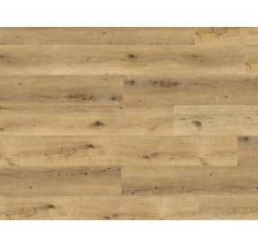 Wineo Designline 800 WOOD XL DB00064 Corn Rustic Oak